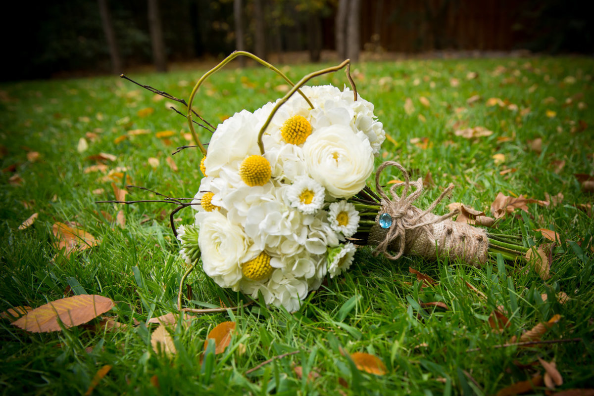 White and yellow flowers by Brittany Barclay Photography