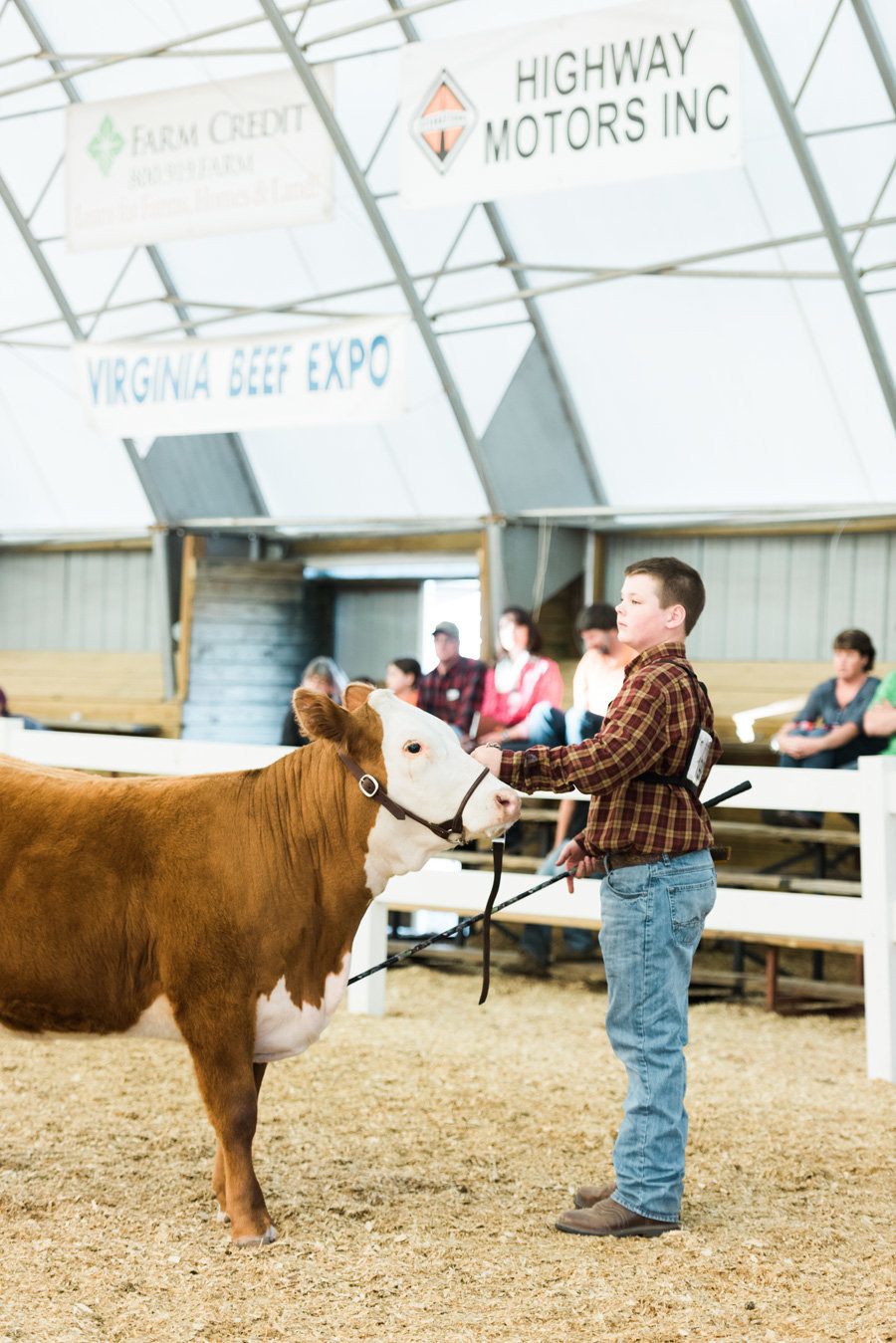 Livestock-Photographer-Stock-Show-PHotos-by-Carrie-B-Joines (2)