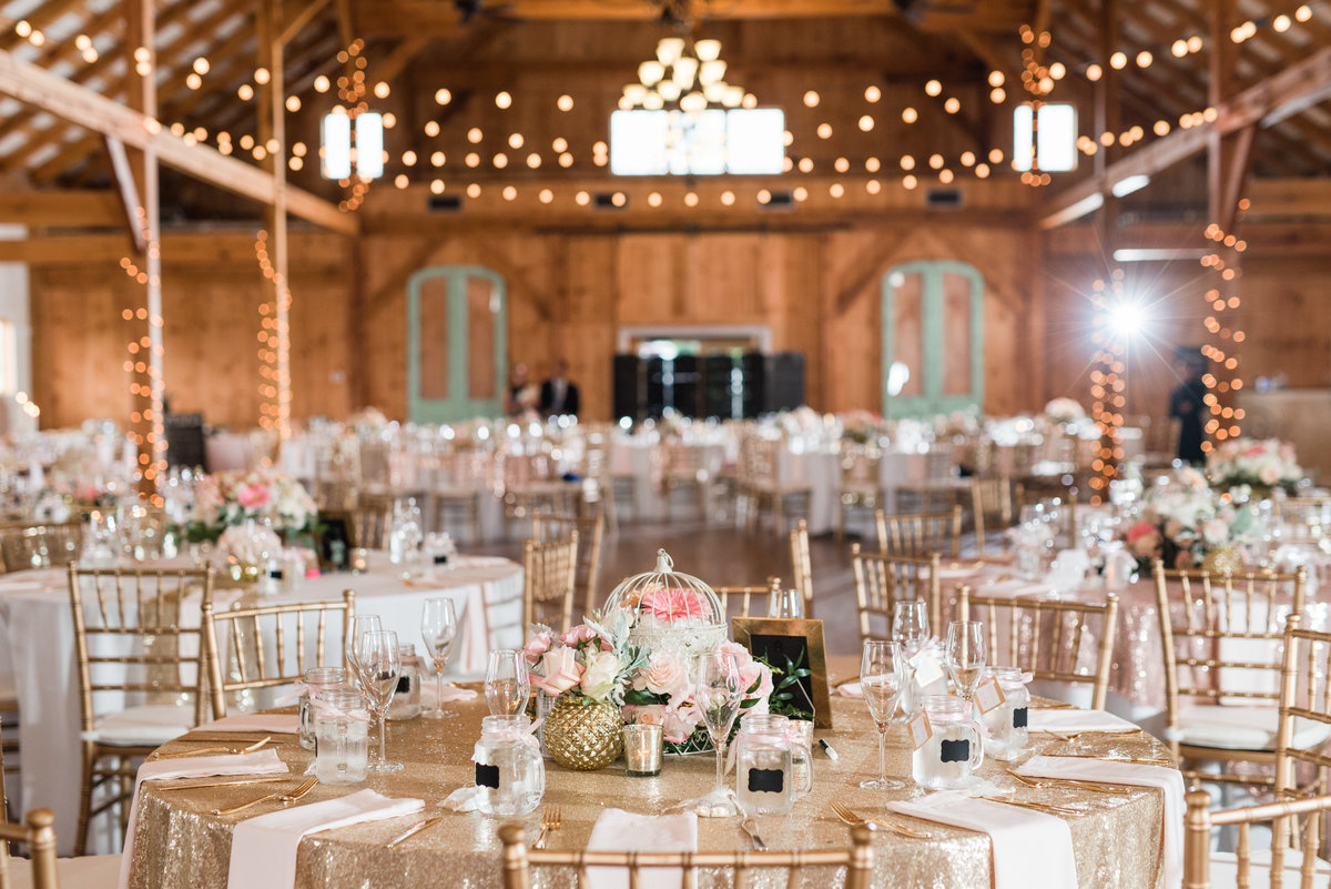 shadow-creek-northern-virginia-blush-southern-barn-wedding-by-norfolk-photographer-photo382