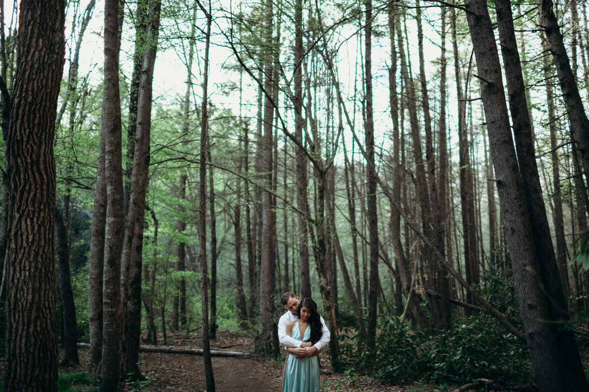 Wedding Photographer Greenville SC , Engagement Photographer Greenville SC , Wedding Photographer South Carolina, Simply Violet Photography, DuPont Forest Engagement