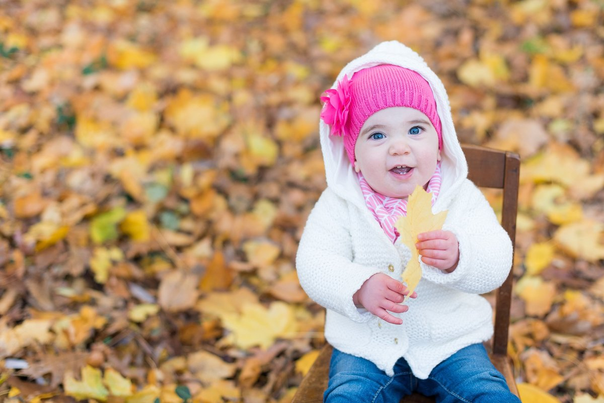 One Year Old Girl holding leaf sitting among fall leaves in Bronxville, NY photo