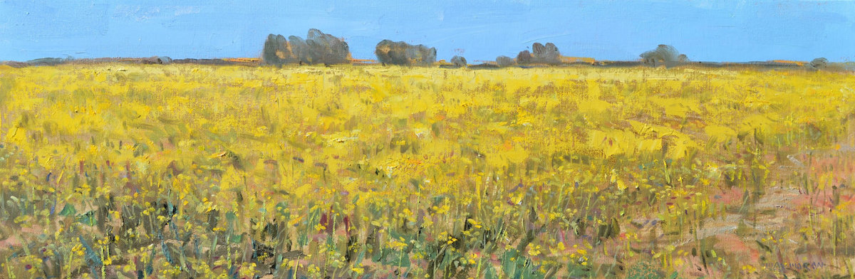 mustard_field_horizon_12_x_36_oil_on_canvas_2