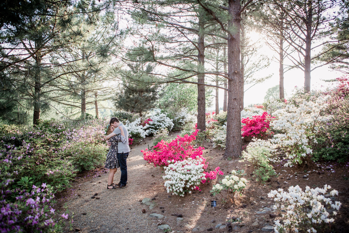 Standing in the middle of a bunch of azaleas at Baxter Gardens engagement photo by Knoxville Wedding Photographer, Amanda May Photos.