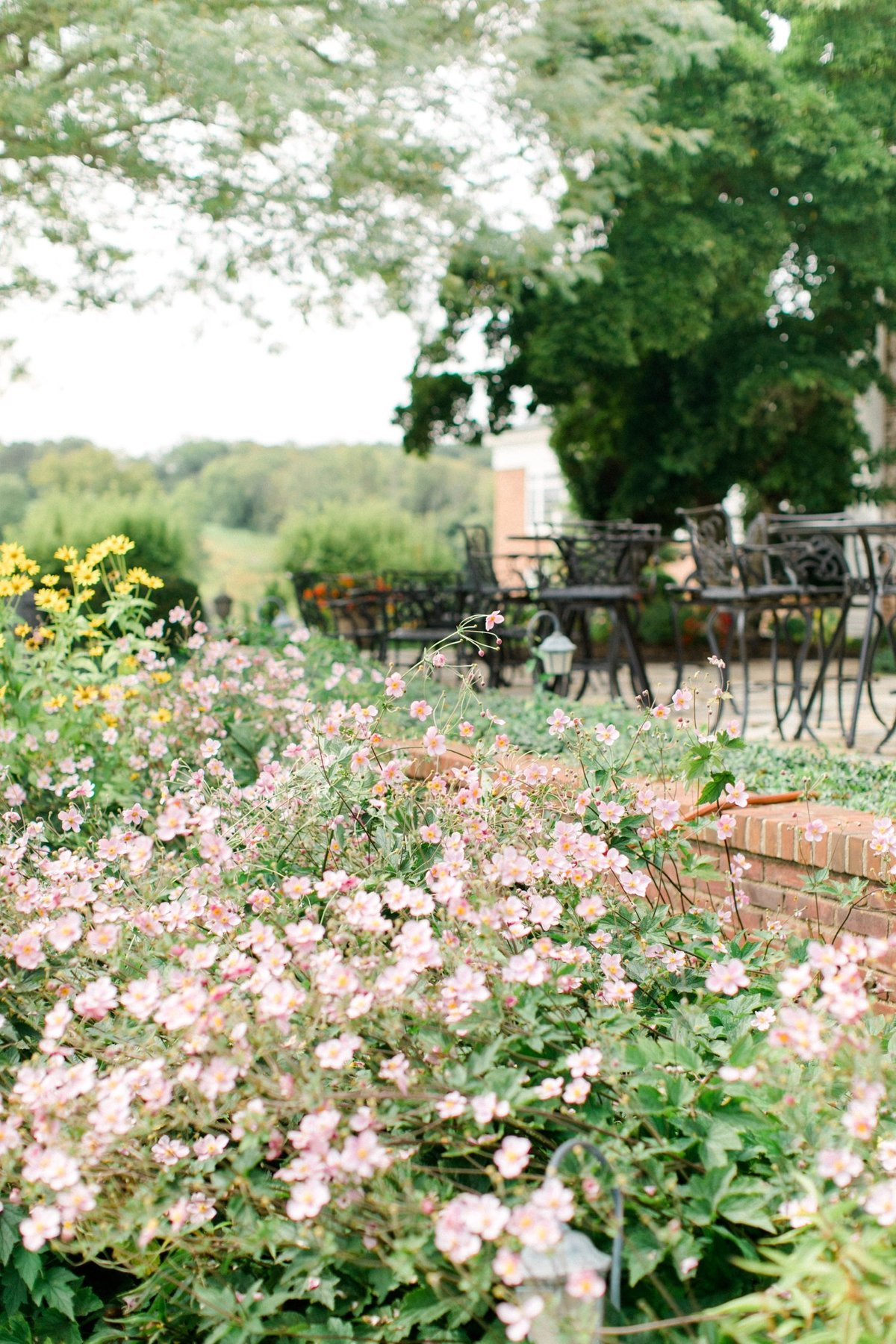 virginia_english garden wedding__2442
