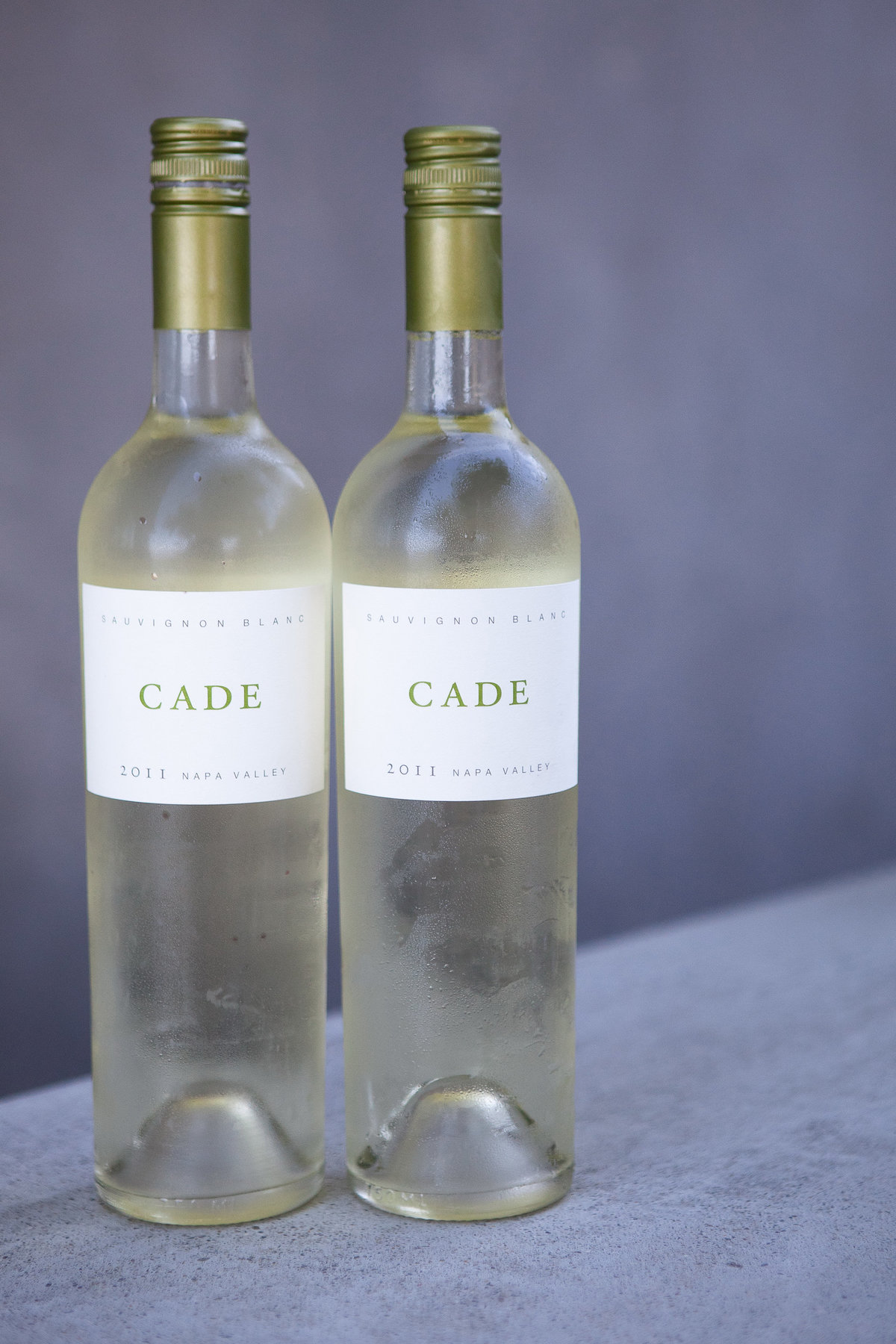 corporate-photography-napa-cade-winery-060112_035