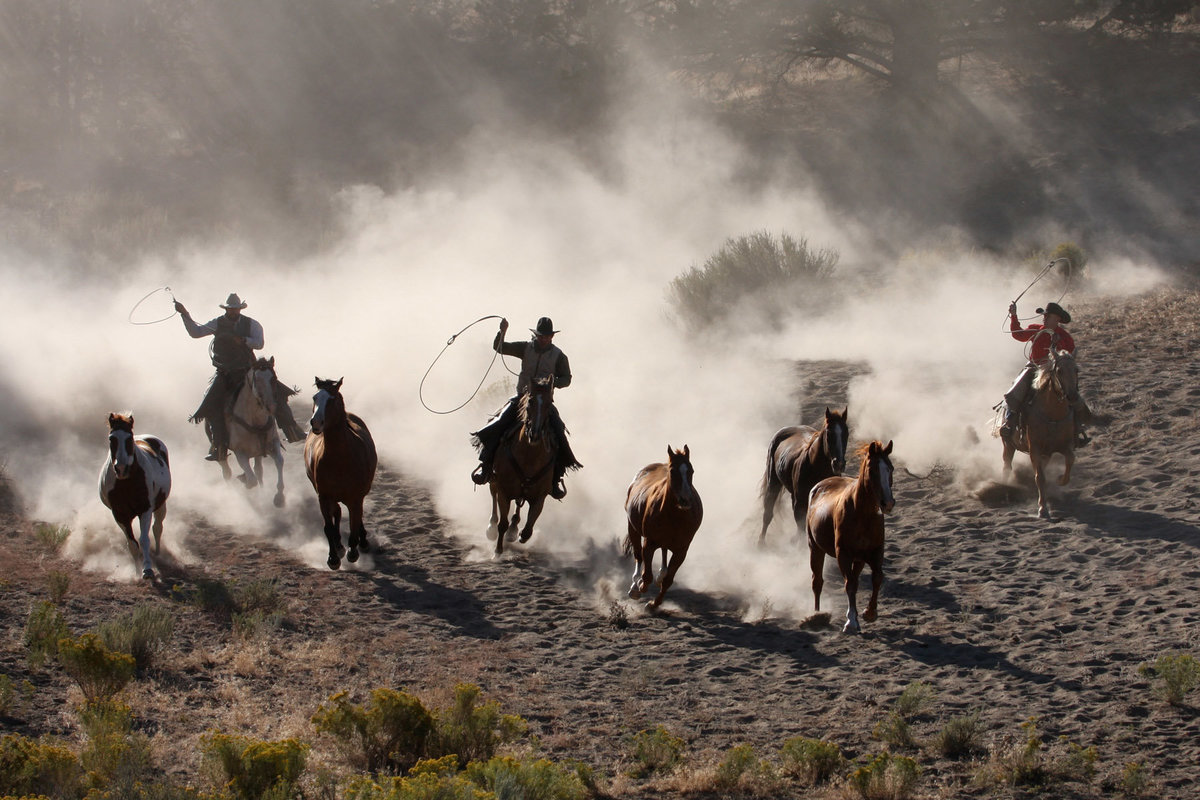 cowboys with horses at sunrise Lynette Smith Photography