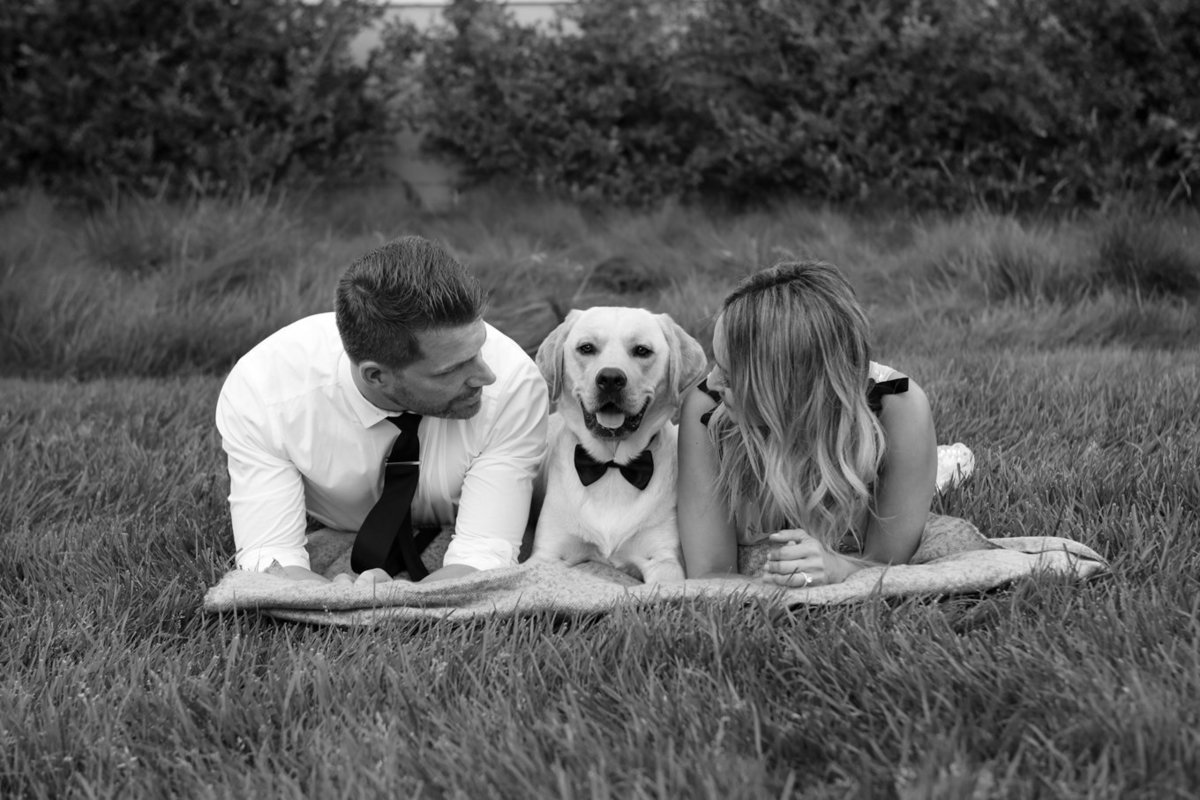 Couple laying down on lawn with dog, engagement portraits in menlo park, california