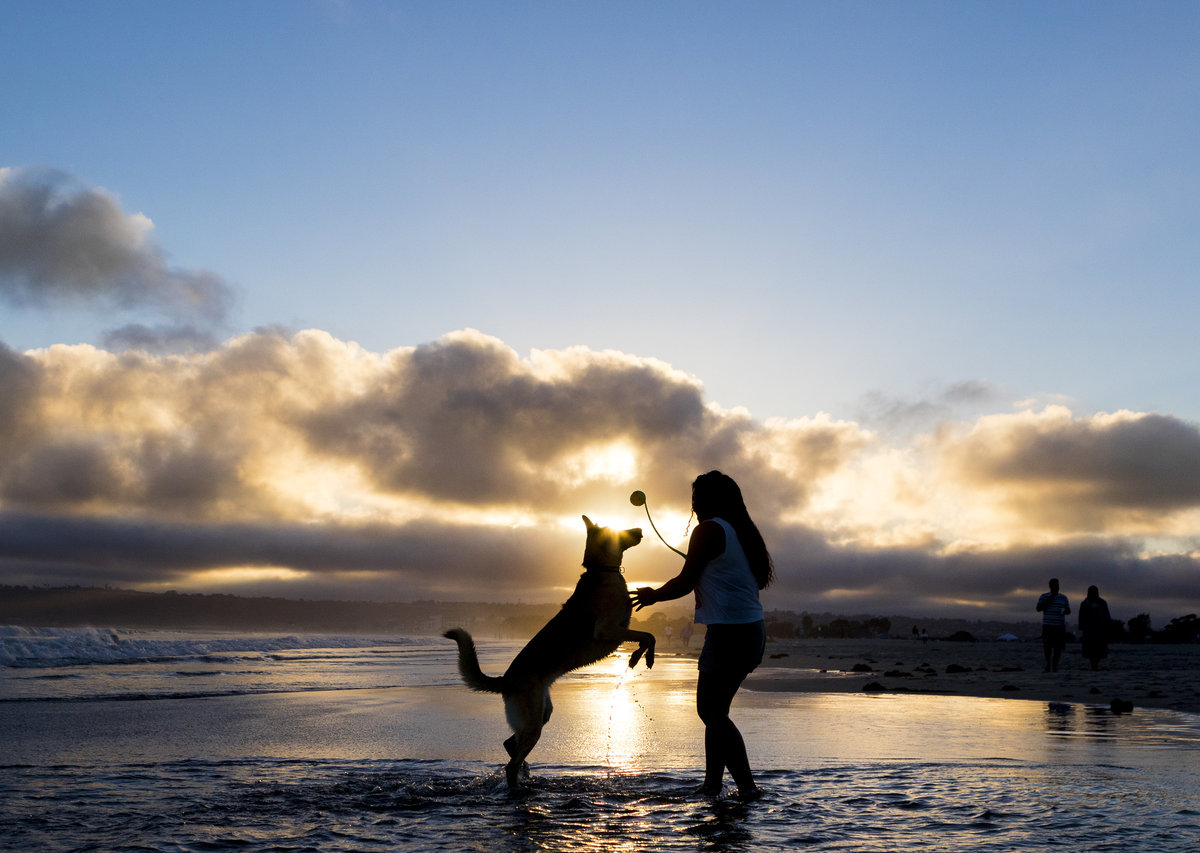 san diego pet family photographer 5