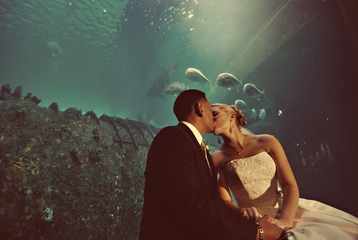 wedding couple kiss in aquarium