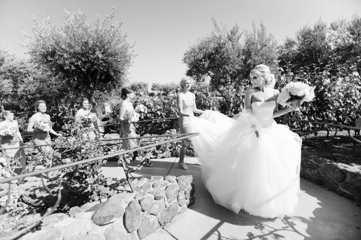 Viansa Wedding, Wine Country Wedding, Bride and bridesmaids, Jennifer Baciocco Photography