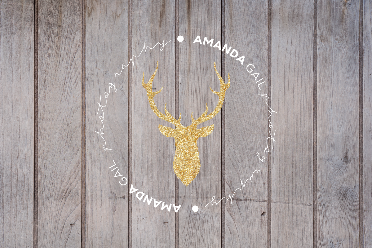 amandagail-logo preview