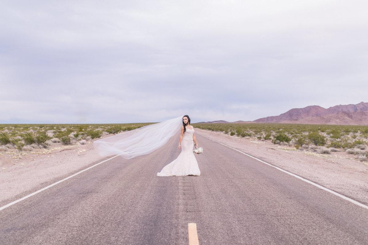 Megan_Haun_Photography_Vegas_Dry_Lake_Wedding-1064