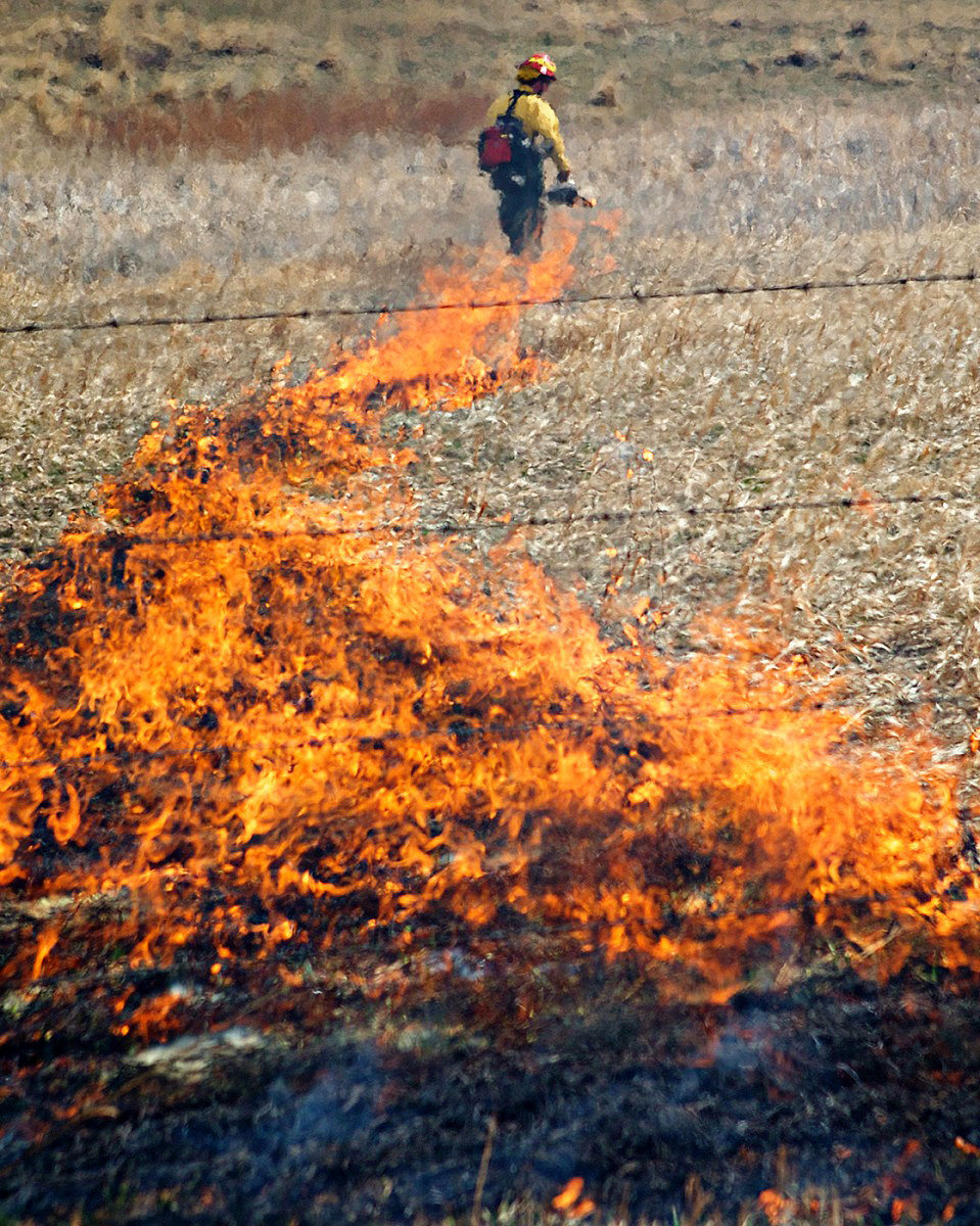 Controlled_Burn_Colorado_Photographer0018