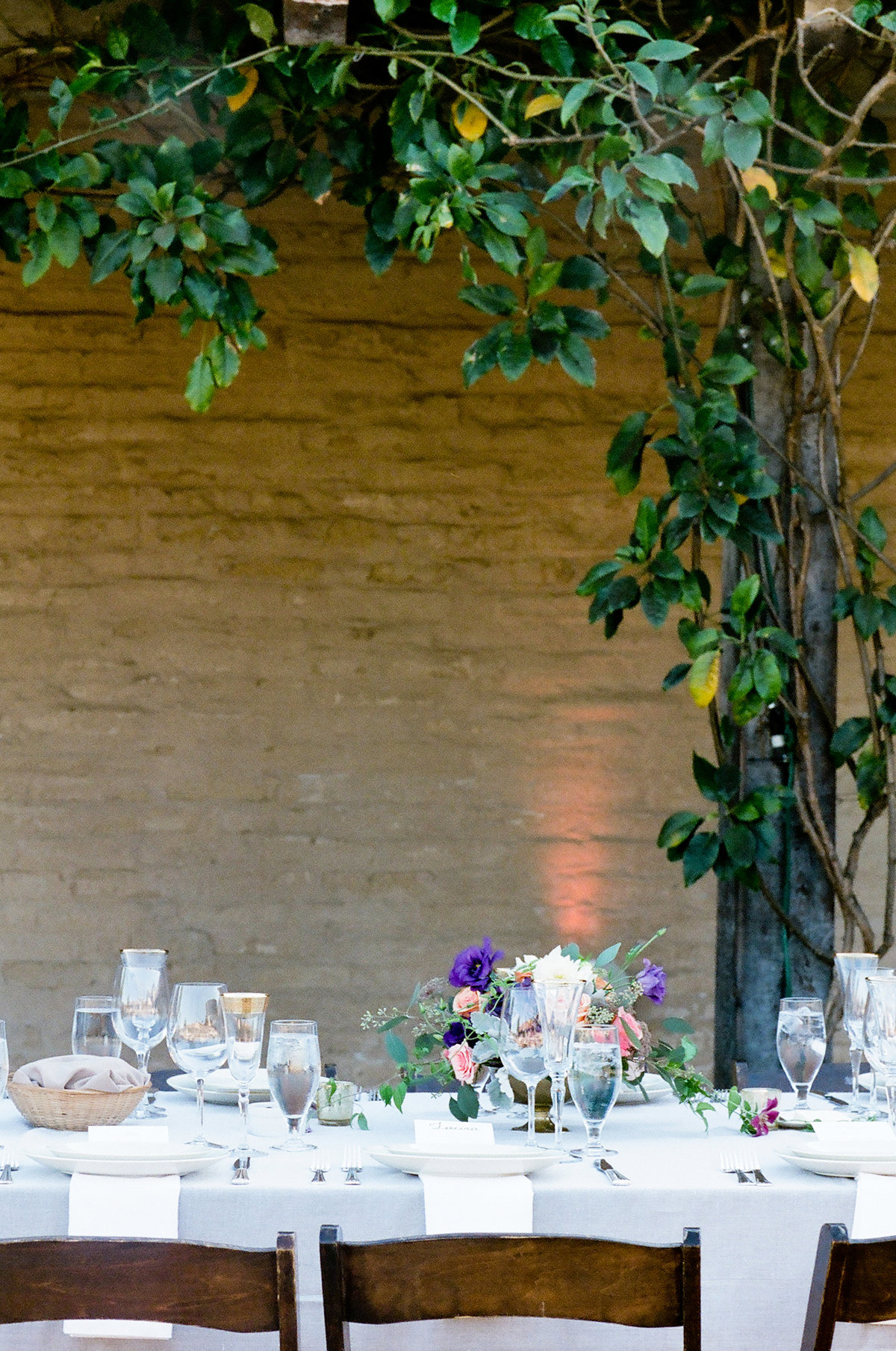 alex_toast_event_christianne_taylor_photos_photography_film_alex_solomon_alexandra_michael_toast_santa_barbara_el_presidio_mission_rustic_elegant_wedding_marry_-675