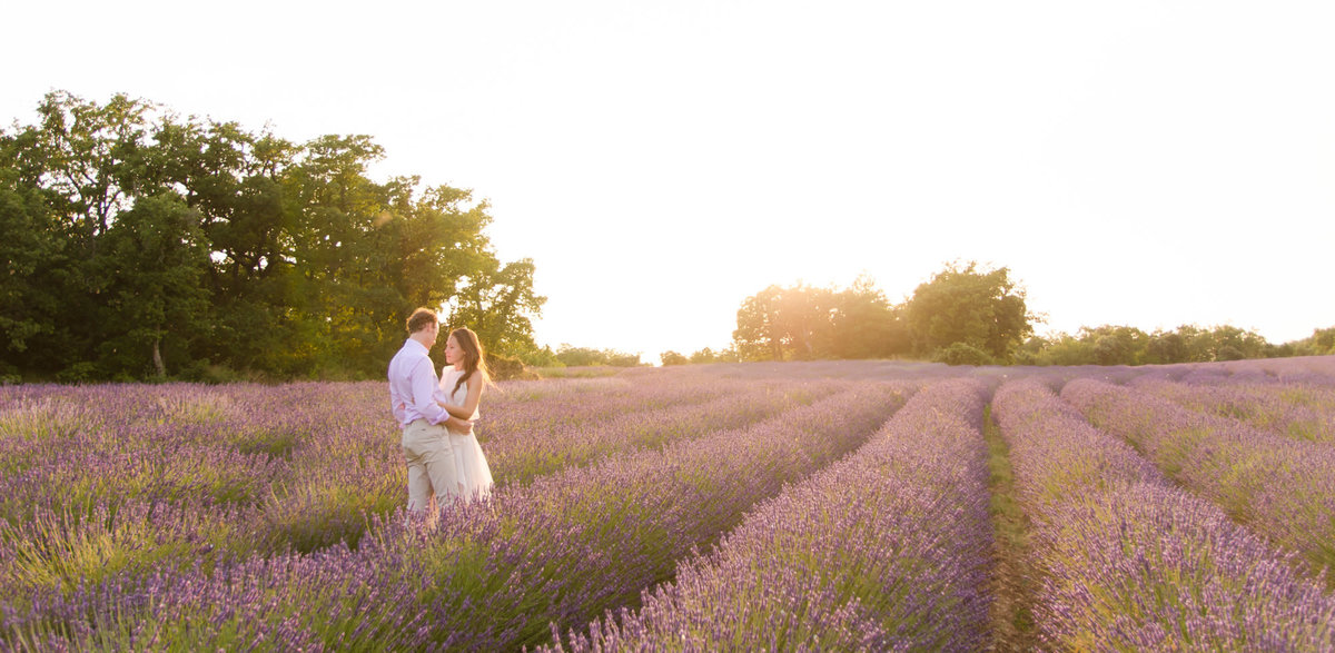 Lavender Wedding Shoot