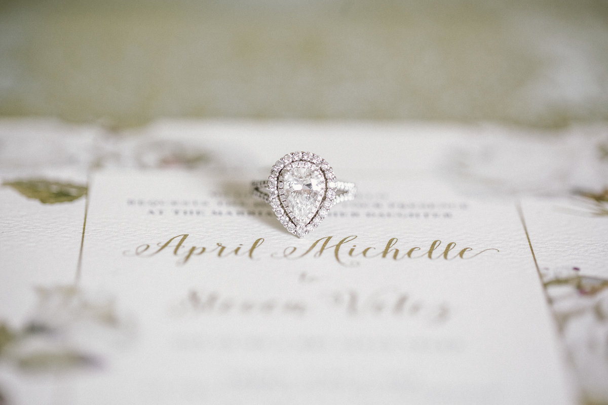 new jersey engagement ring wedding photography (16)