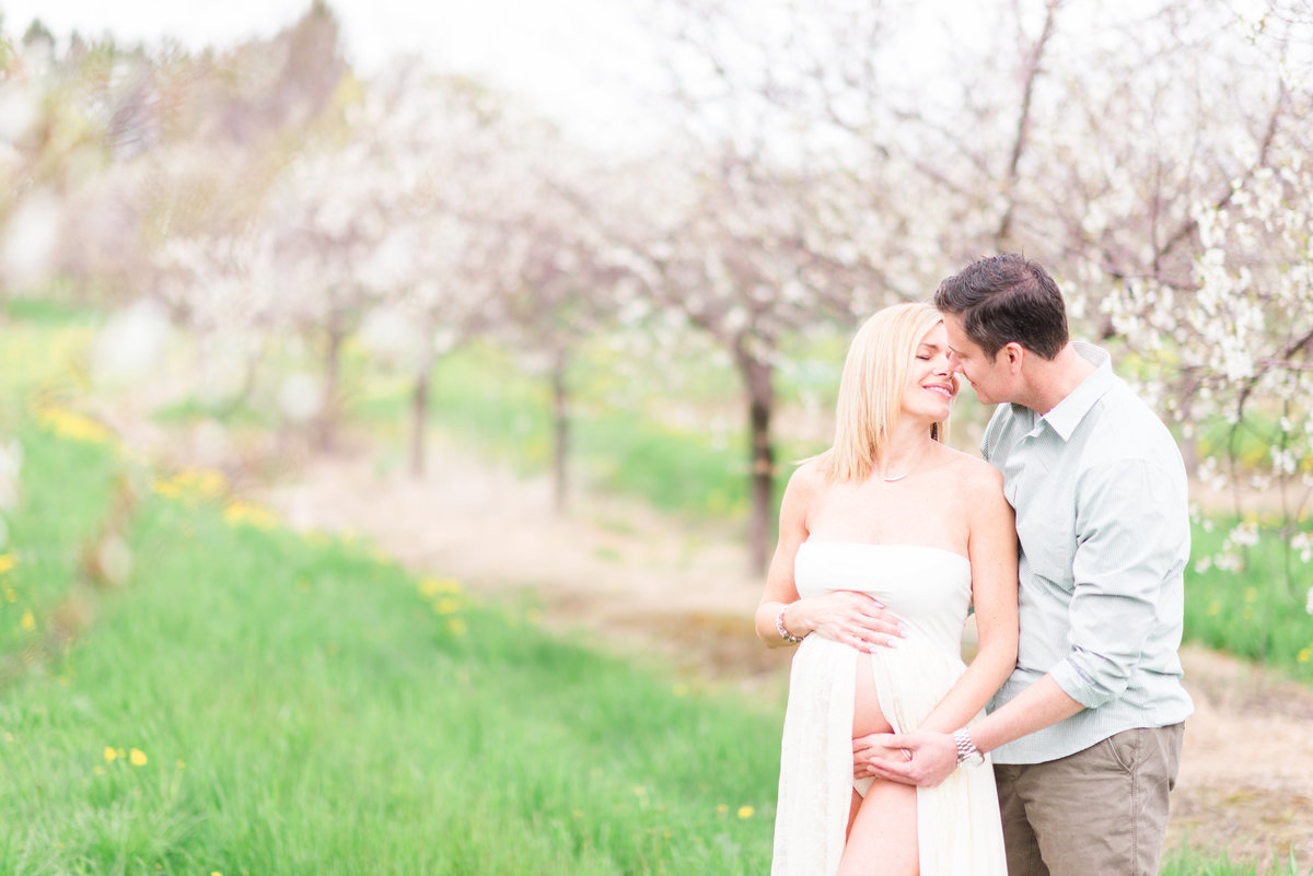 cherry blossom orchard maternity portrait photography in traverse city michigan