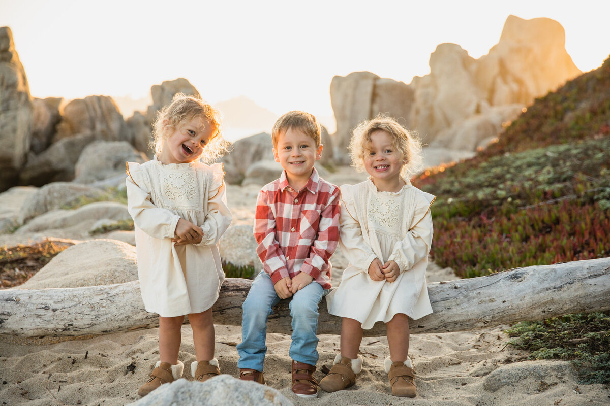 Big family photography in Monterey