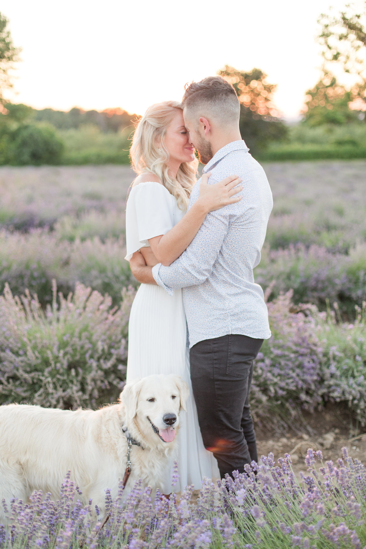 Ottawa-Wedding-Photographer-La-Maison-Lavande-Lavender-Field-Engagement-3