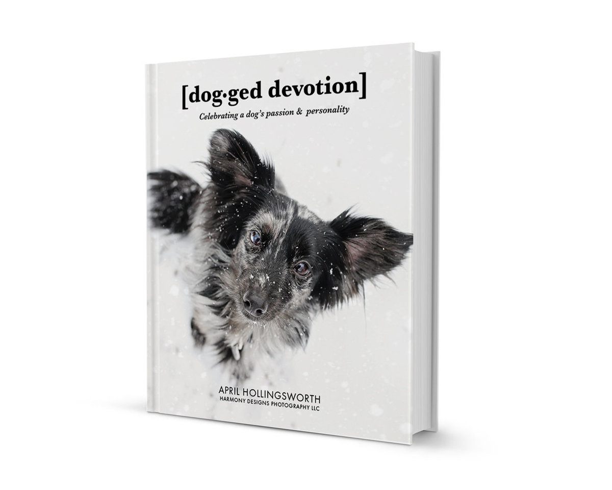 dogged devotions cover mock
