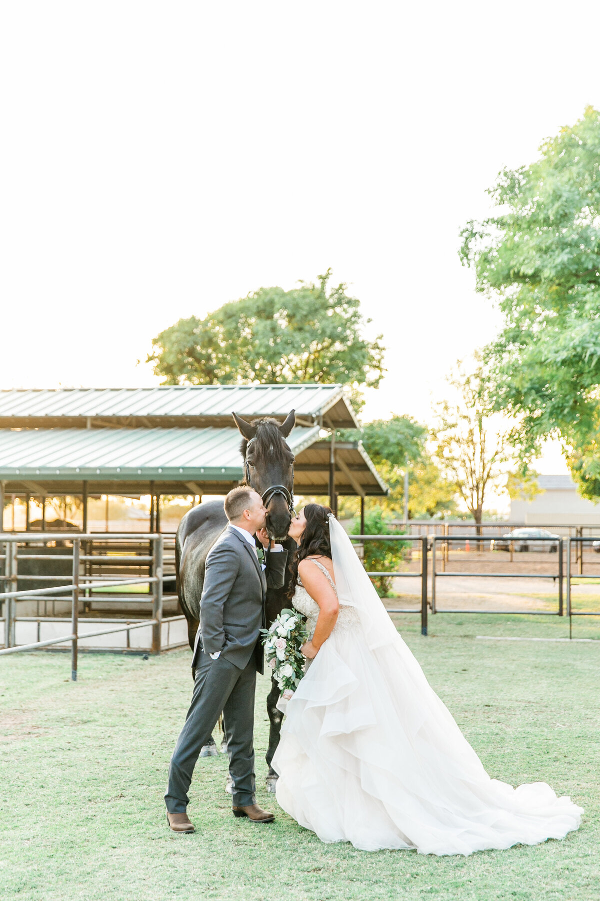 Karlie Colleen Photography - Glendale Arizona Backyard ranch wedding - Meghan & Ken-492