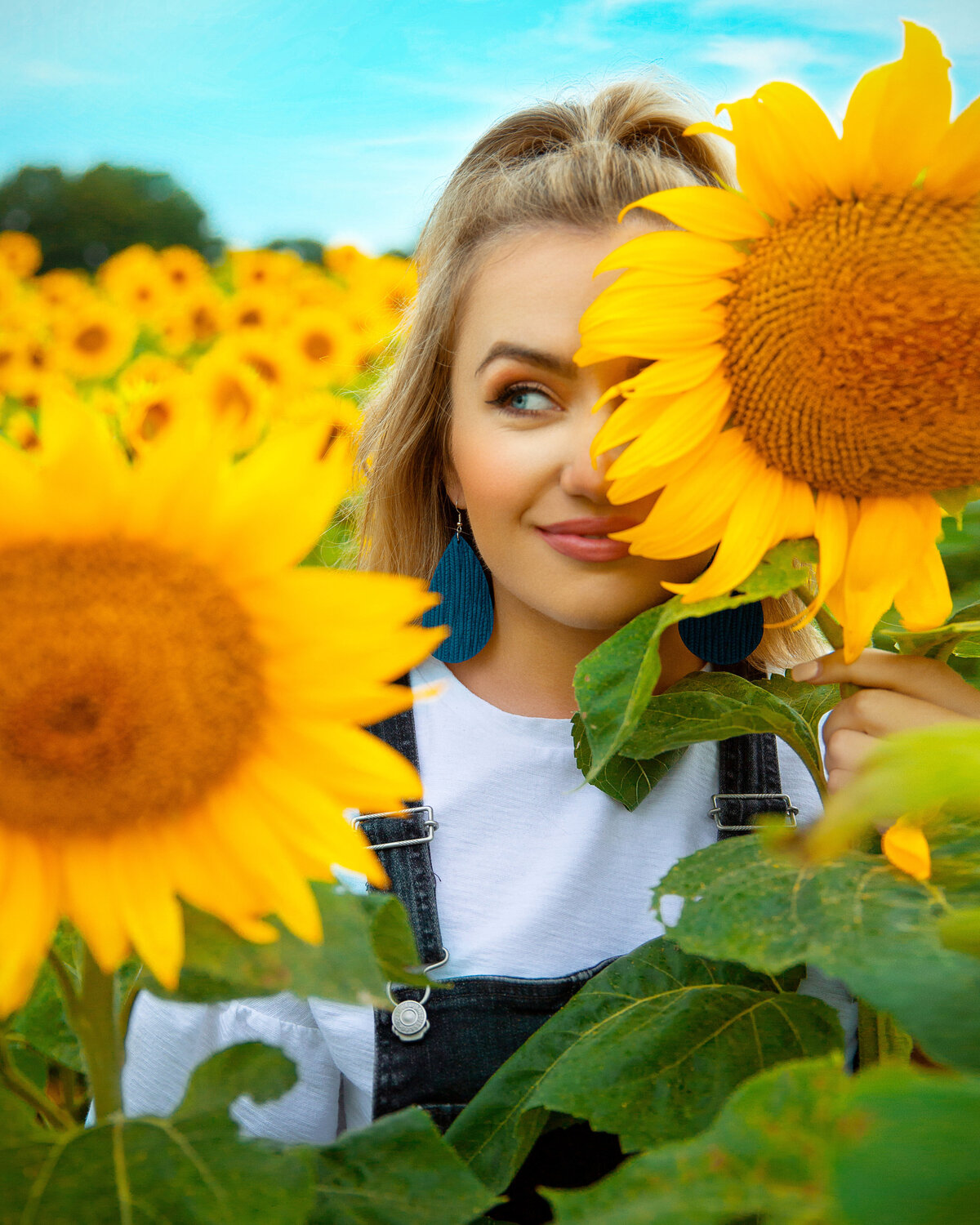 seniorsunflower