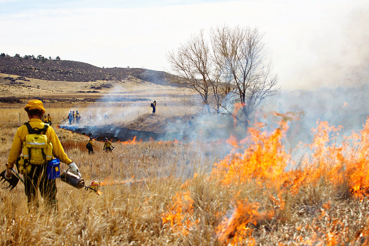 Controlled_Burn_Colorado_Photographer0013