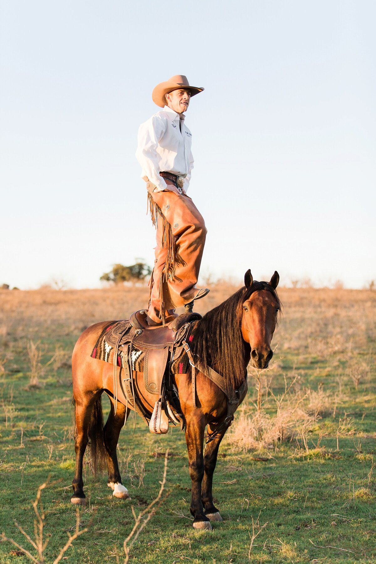 cowboy standing on the back of his bridleless mustang horse