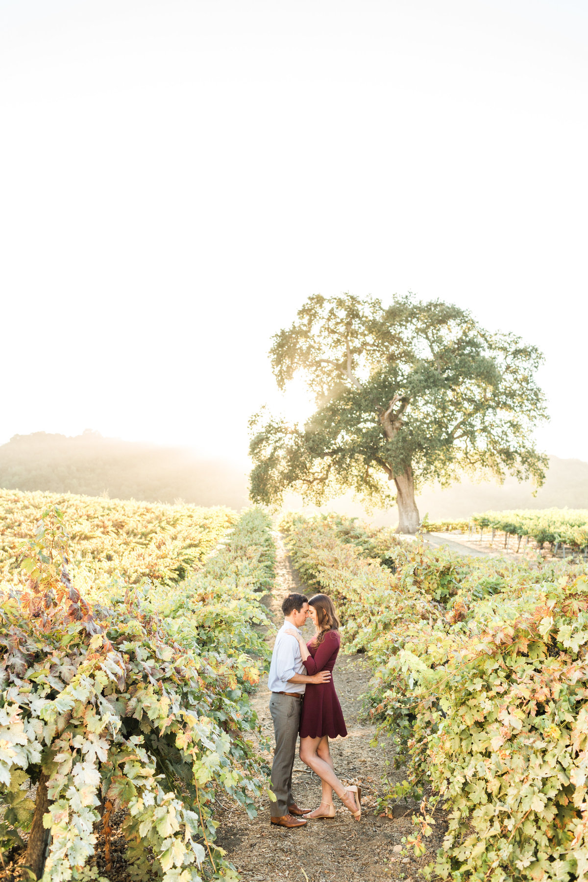 hammersky vineyards paso robles engagement 27