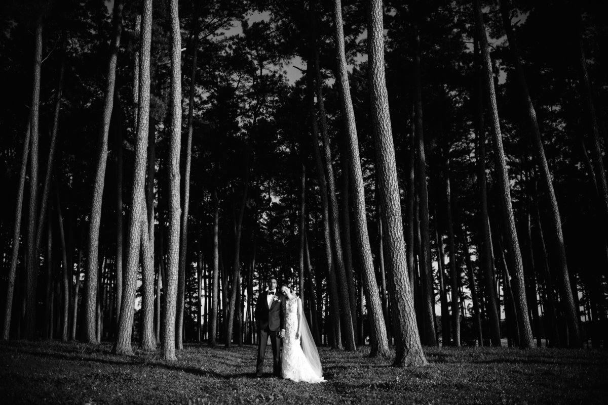 Fine Art Editorial Weddings Portraiture