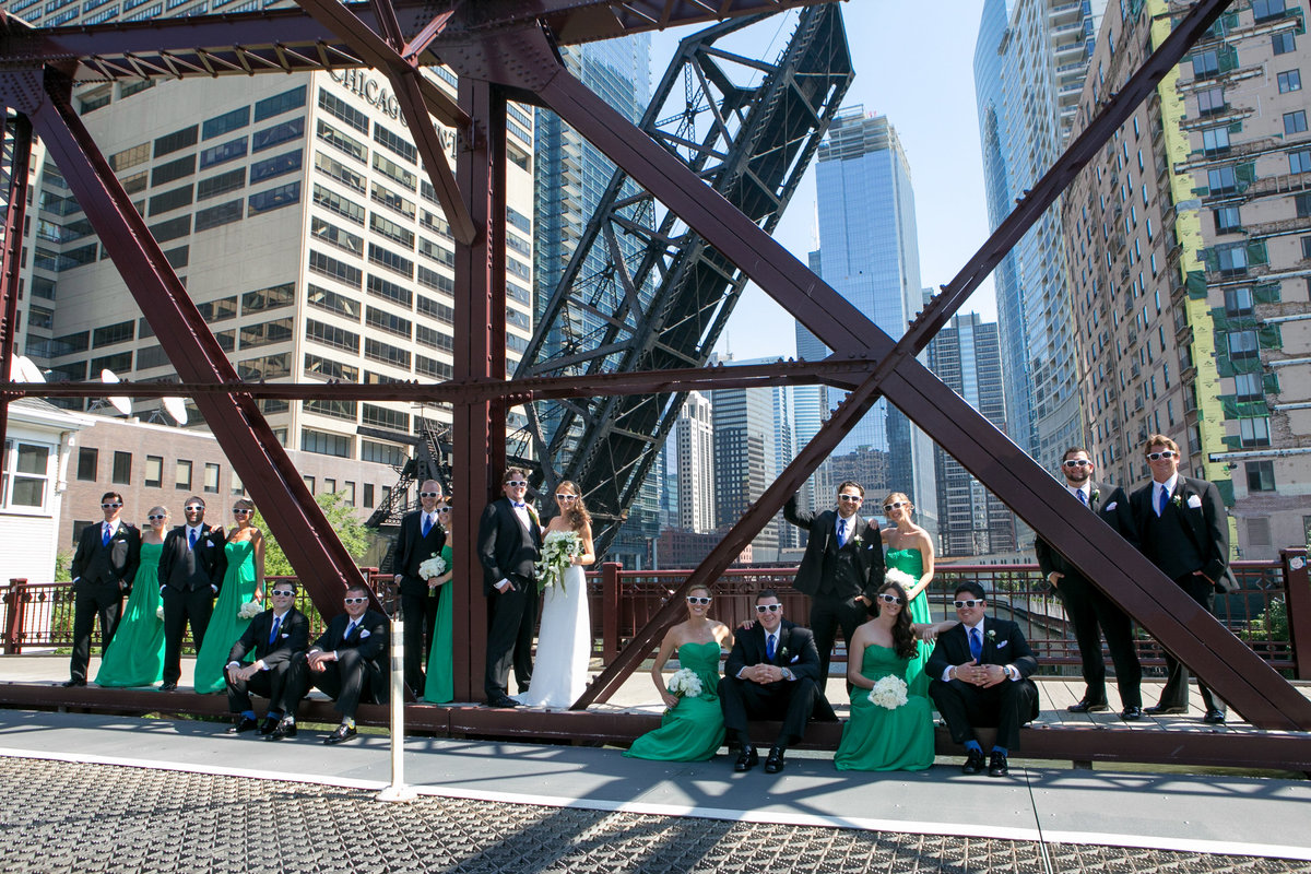 chicago wedding photographers, illinois photography, photographers, top (12 of 70)