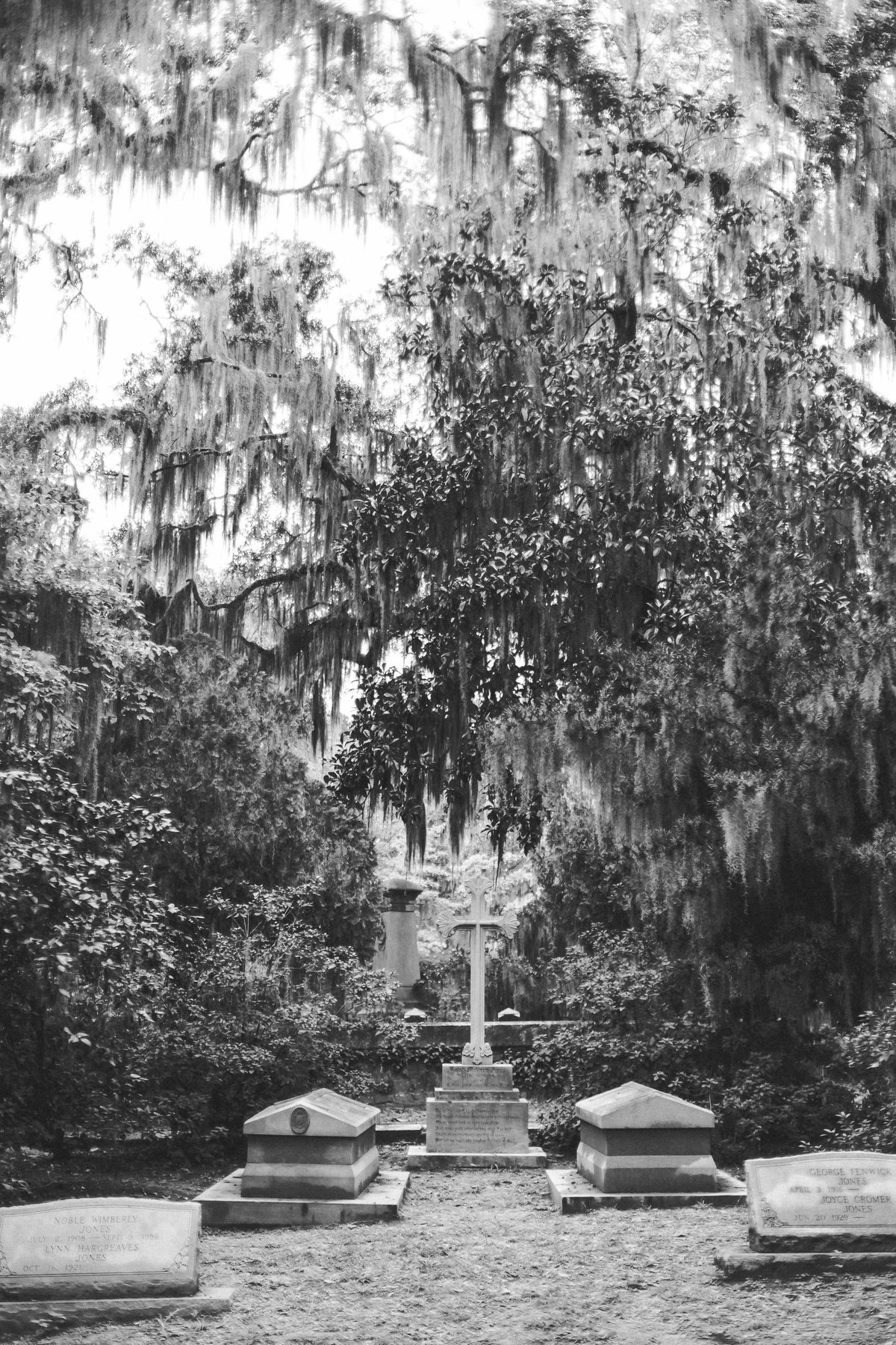 Savannah Georgia - DiBlasio Photo-2217