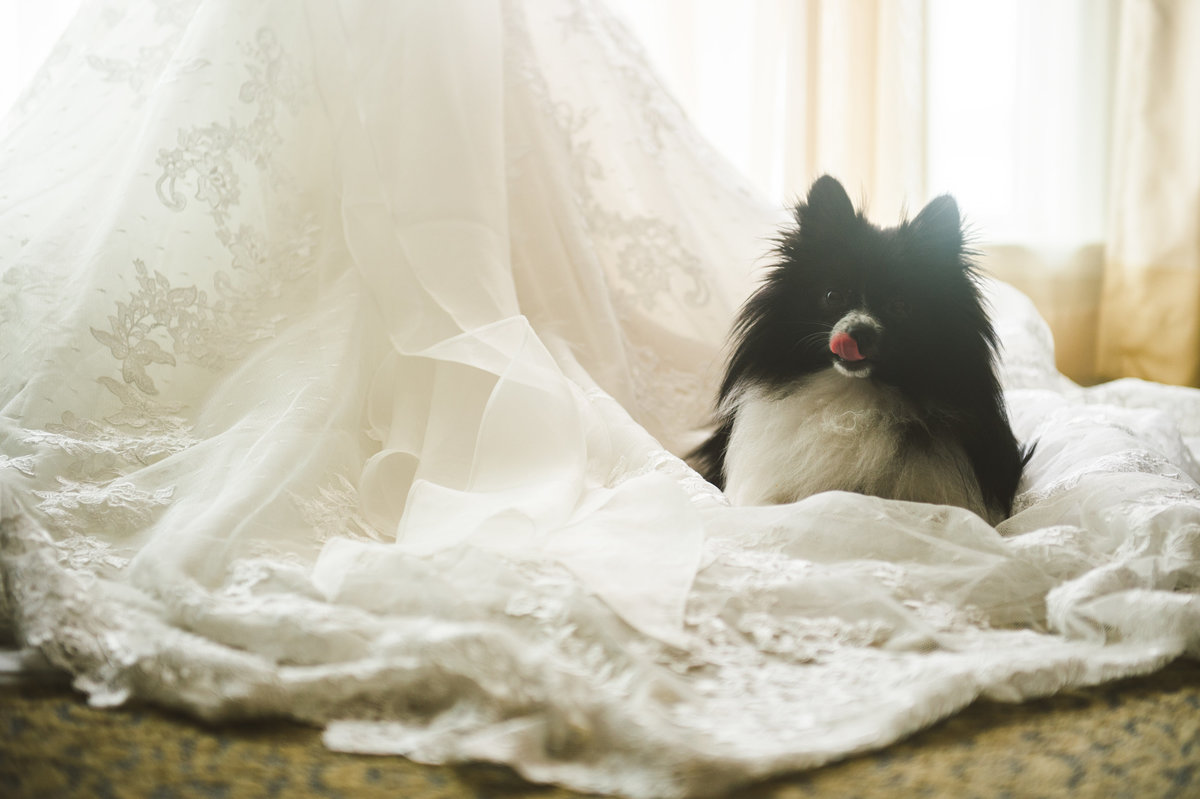 Artistic-Wedding-Photographer-32