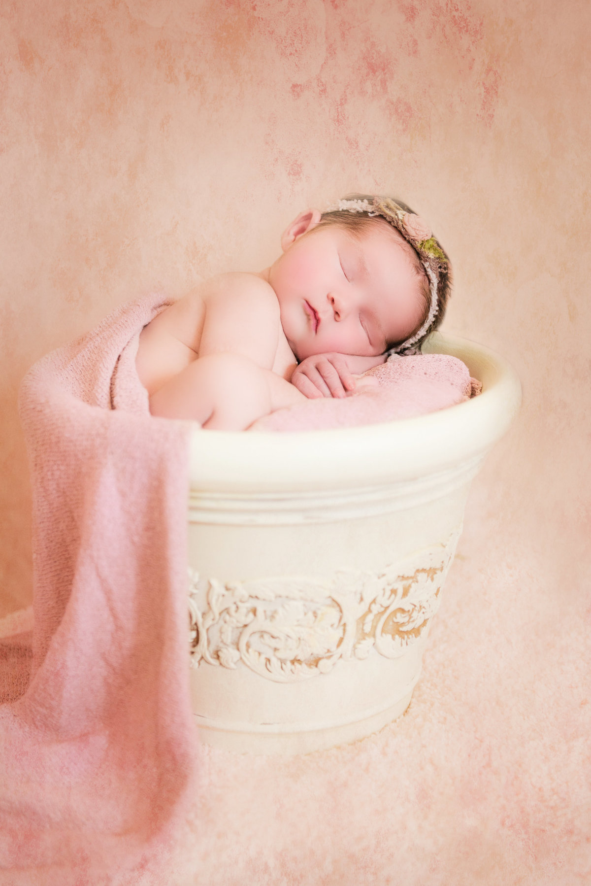 traverse city michigan newborn photographers