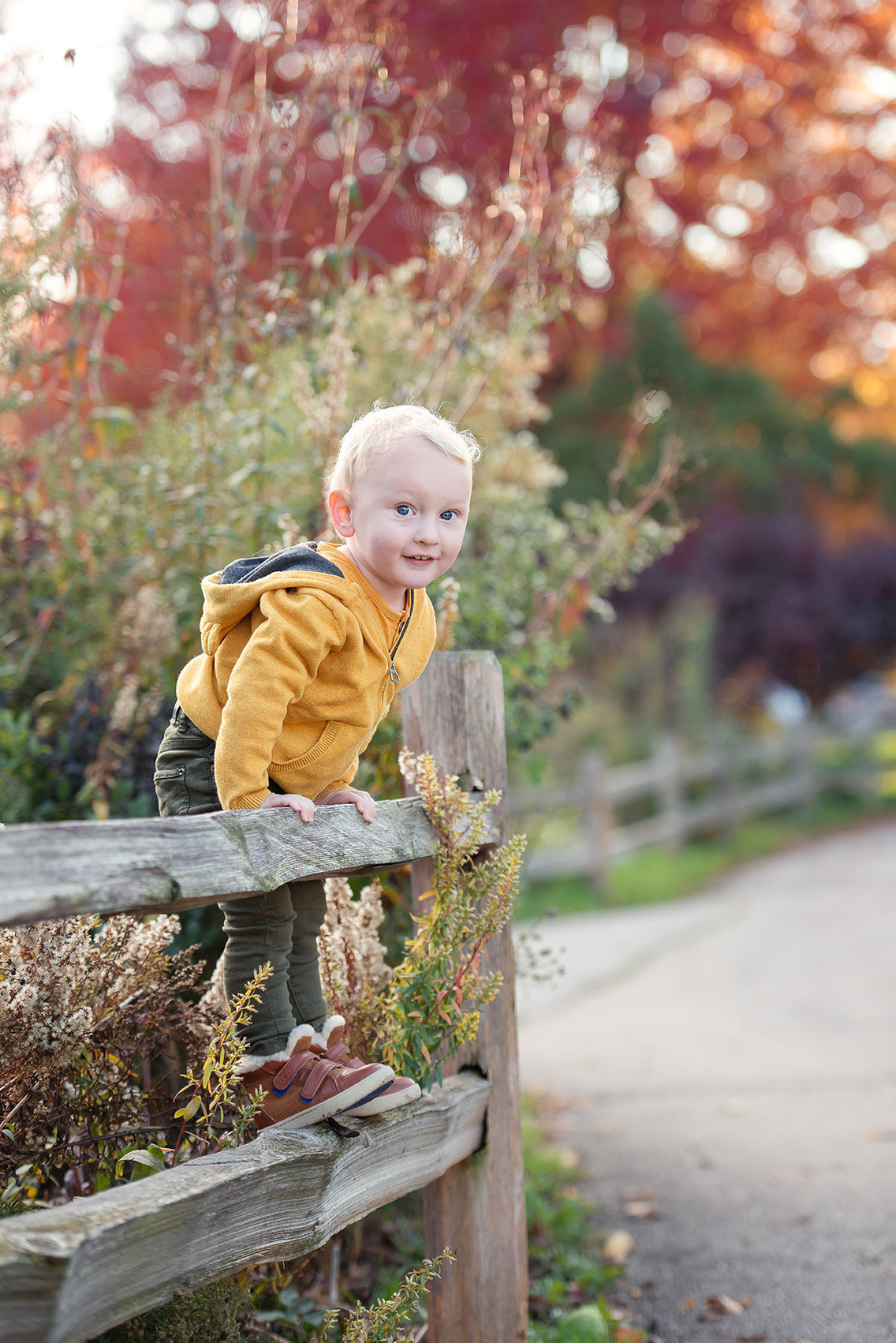 a boy on a fence at fall in winnemac park