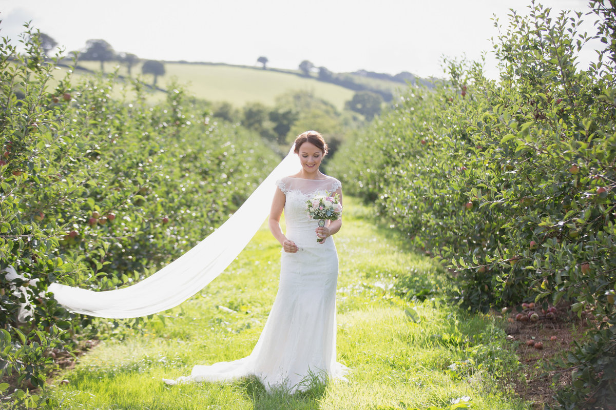 the corn barn cullompton bride