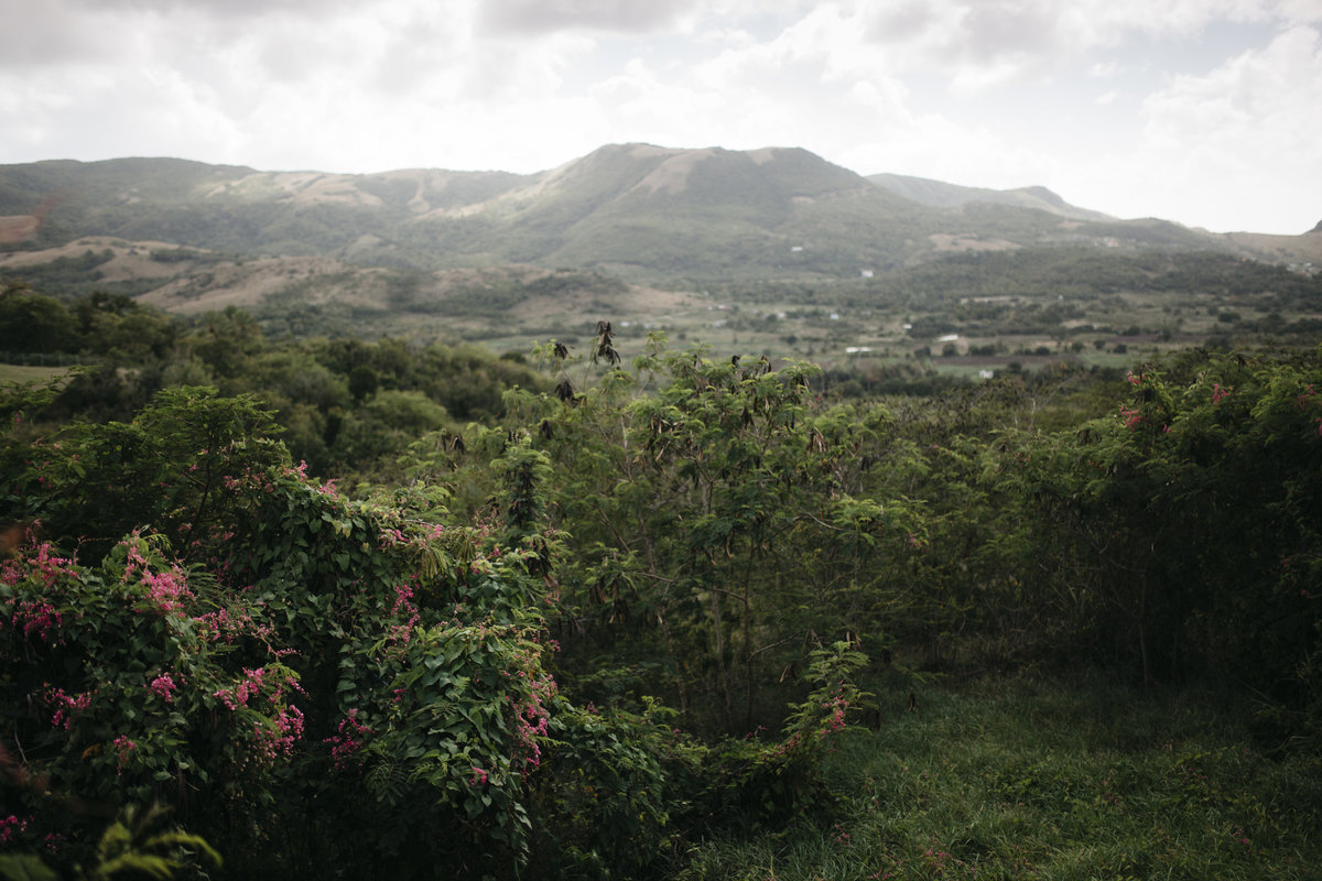 antiguamountain