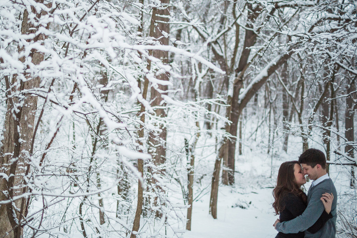 snowy winter engagement photographs in rockford illinois