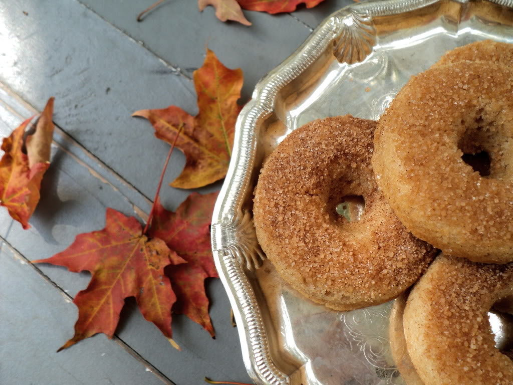 Cider Douhgnuts
