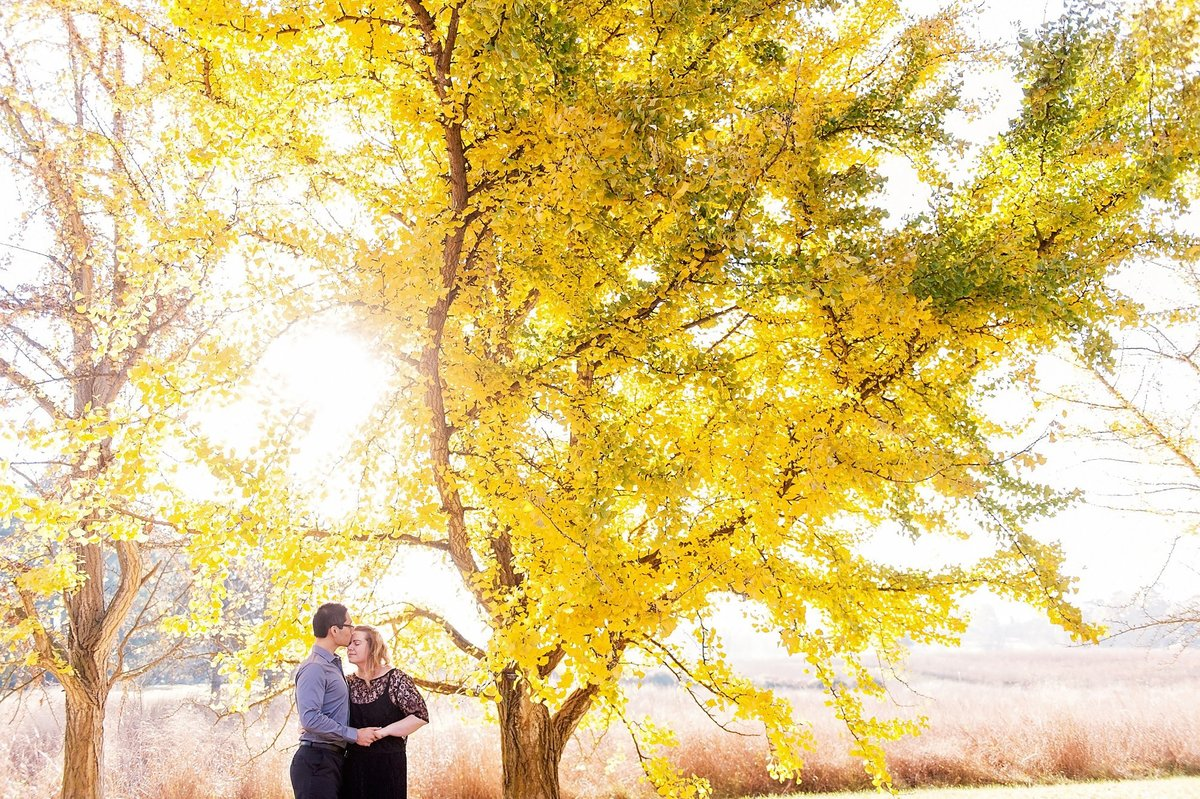 richmond fall engagement session with bright yellow tree