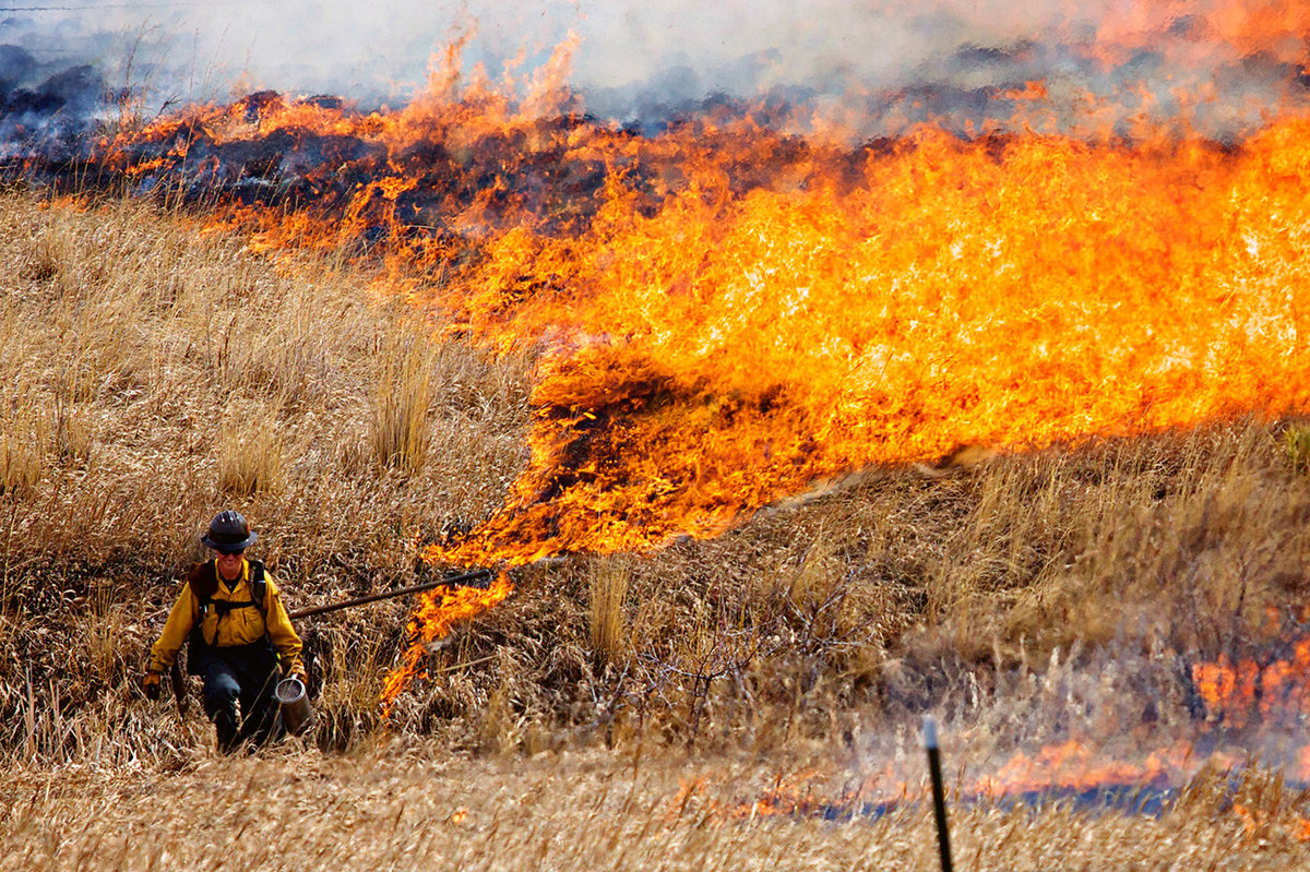 Controlled_Burn_Colorado_Photographer0010