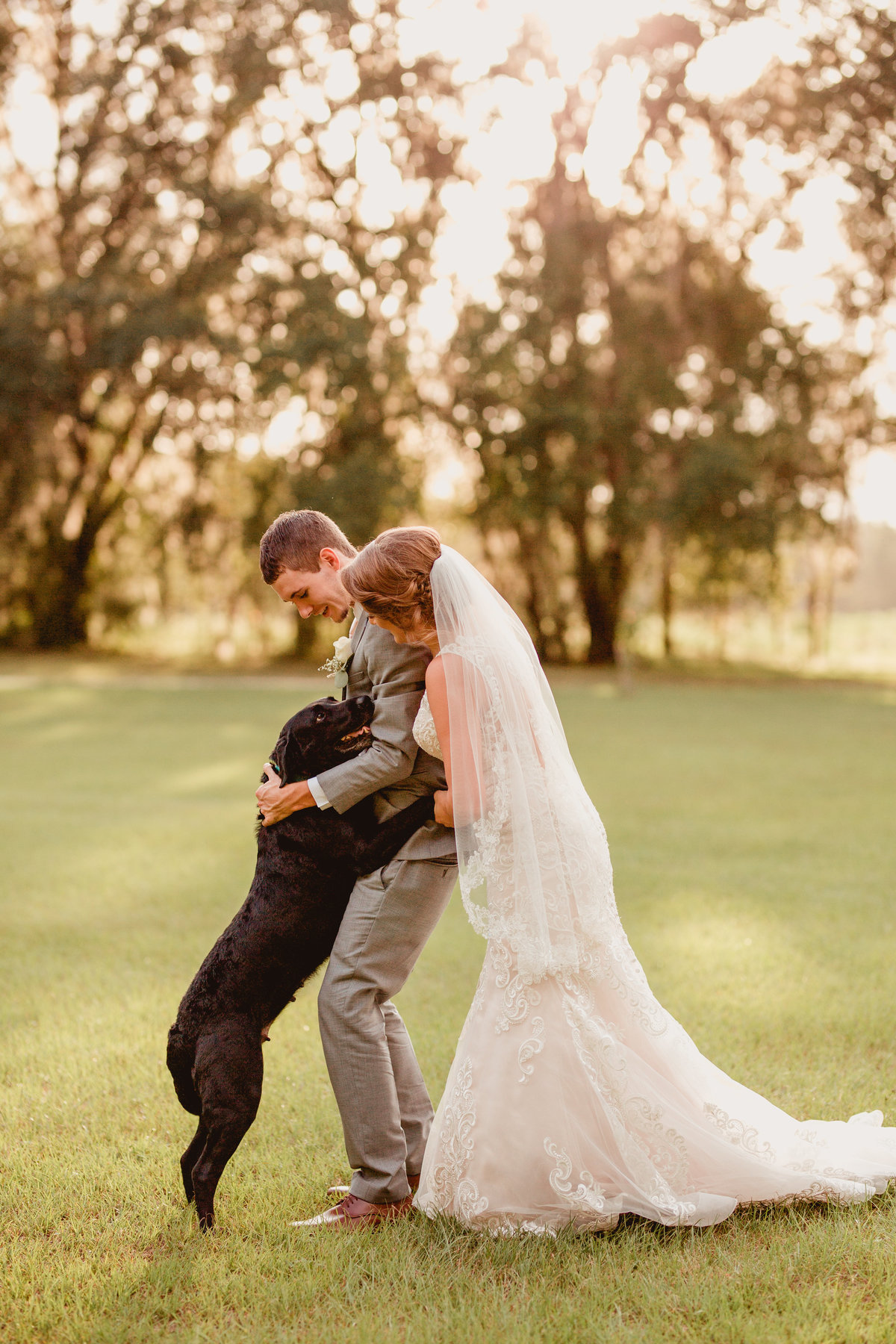 Wedding photography using the couples dog during portraits at Southern Pines, Lake City, FL.