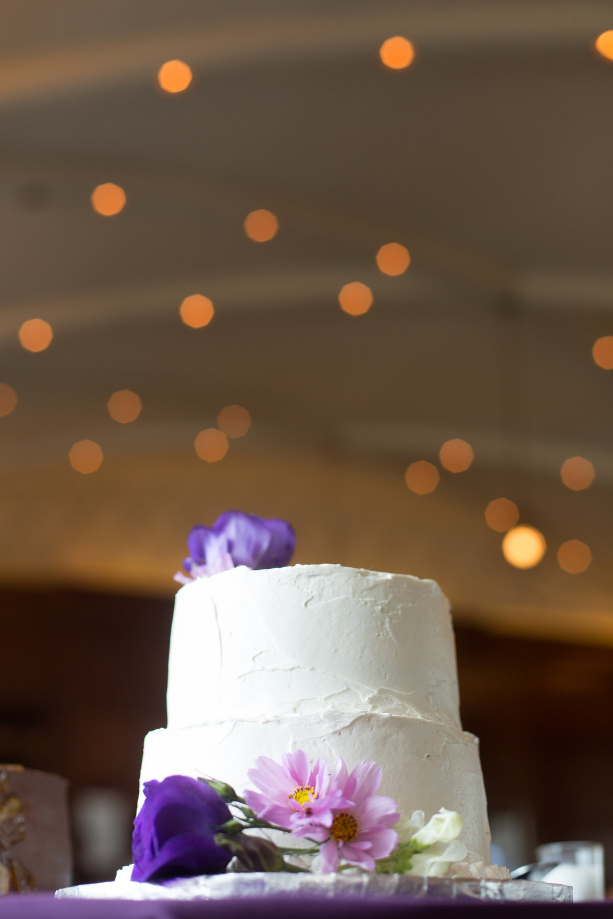 Chicago-Symphony-Orchestra-Wedding-055