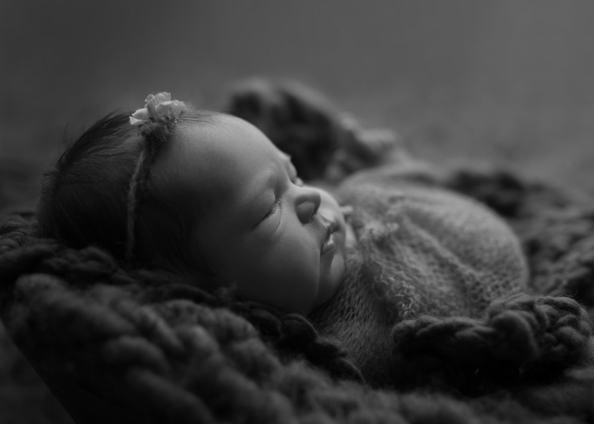 Traverse City, Michigan-Newborn-Photography4