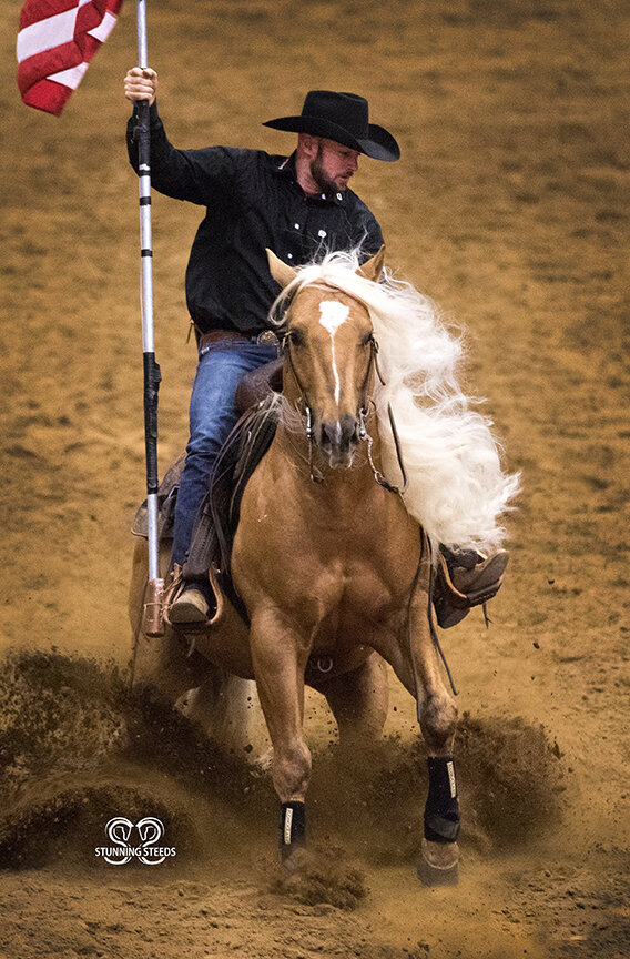 dan james palomino reining stallion