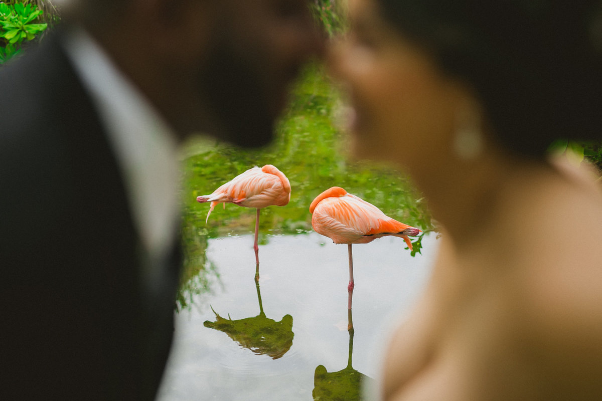 punta_cana_caribbean_wedding_photographer_001