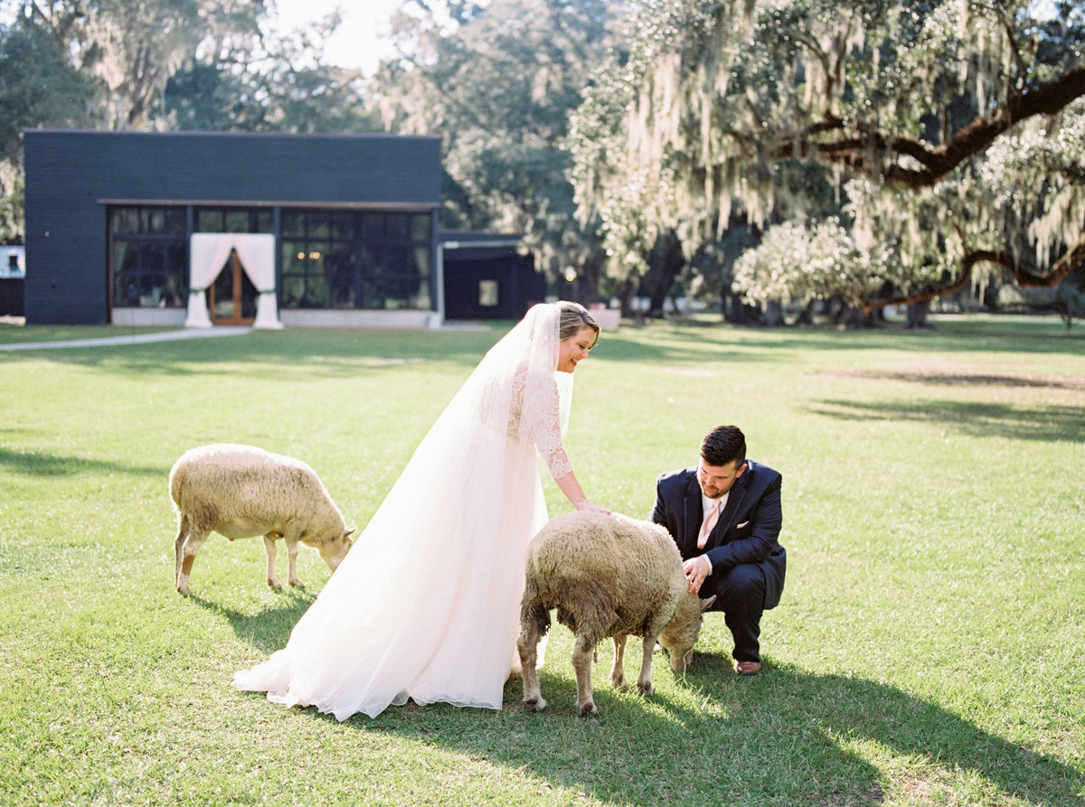 1810-middleton-plantation-charleston-october-wedding-film-215