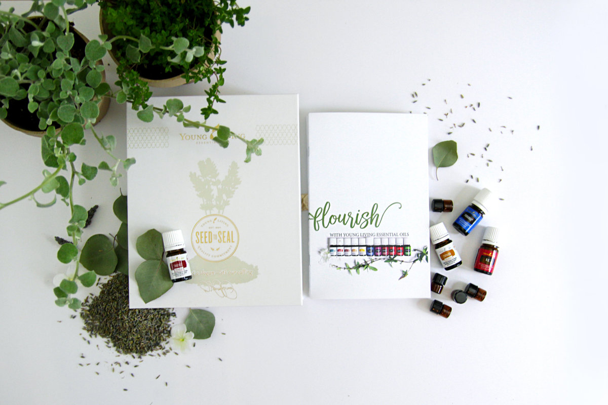 Young Living booklet, YLEO tools, Intro to Young Living