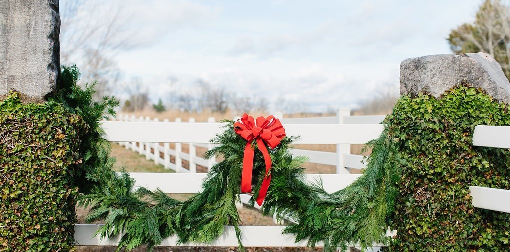 Marblegate_Farm_Christmas_Abigail_Malone_Photography_-243