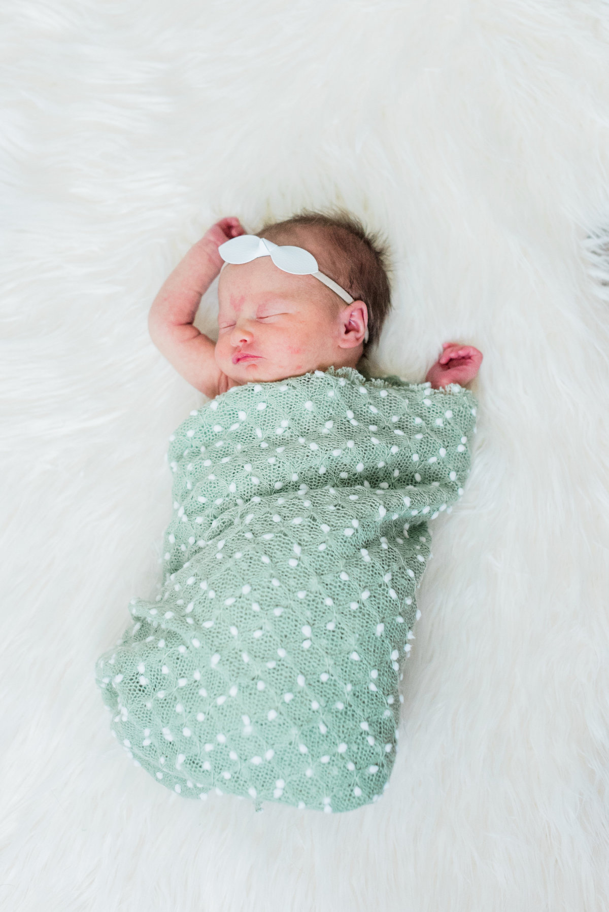 wake forest, nc newborn photo